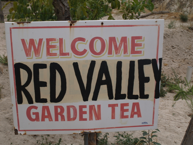 Red Valley - 28