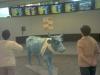 Кравите на Прага - 2