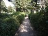 Градините - 7