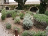 Градината - 2