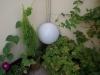 Градина - 14