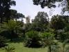 Ботаническата градина - 6