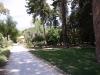 Ботаническата градина - 3