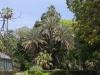 Ботаническата градина - 5