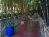Градината - 7