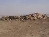 Пустинята - 14