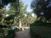 Никитский сад - 10