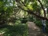 Никитский сад - 11