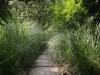 Никитский сад - 13