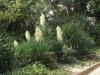 Никитский сад - 14