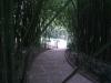 Никитский сад - 15