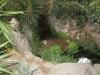 Никитский сад - 18